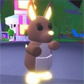 El canguro, mascota de adopt me