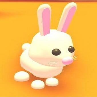 El conejito, mascota de adopt me