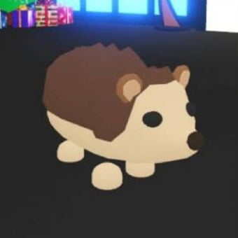 El erizo, mascota de adopt me