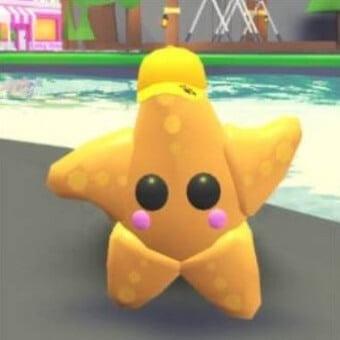 La estrella de mar, mascota de adopt me