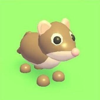 La musaraña, mascota de adopt me