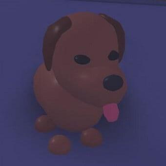 El perro de chocolate de adopt me