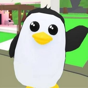 El pingüino, mascota de adopt me