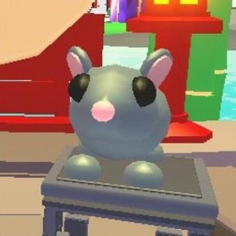 La rata, mascota de adopt me