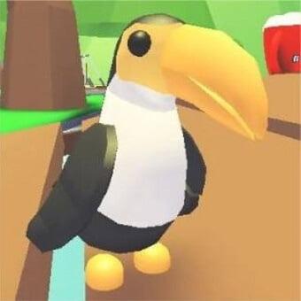 El tucán, mascota de adopt me